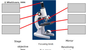 Image of microscope